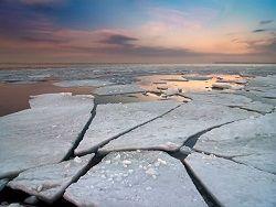 В Антарктике зафиксировали аномальный рост температуры